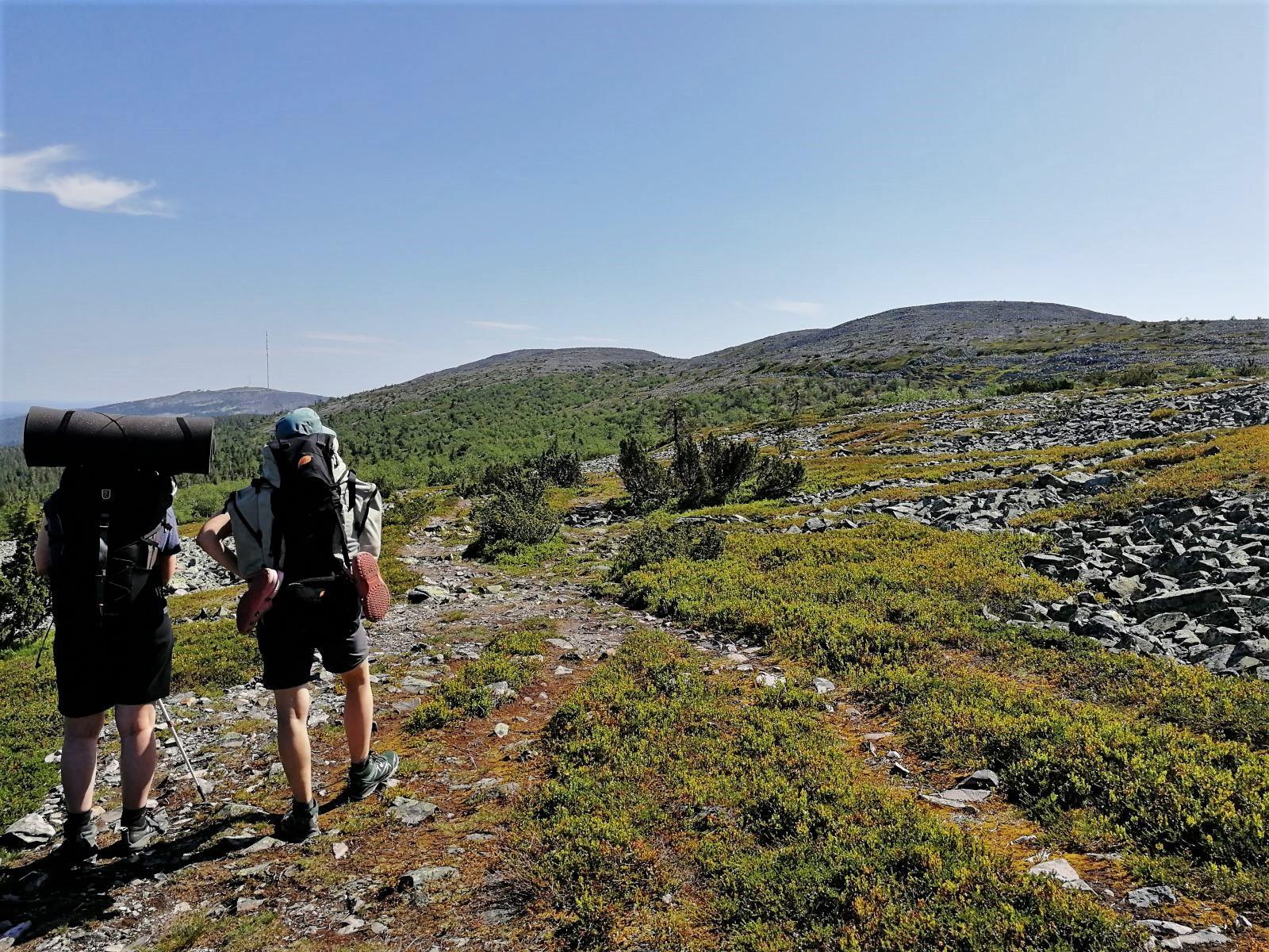 Vaellus Pyhä-Luoston kansallispuisto