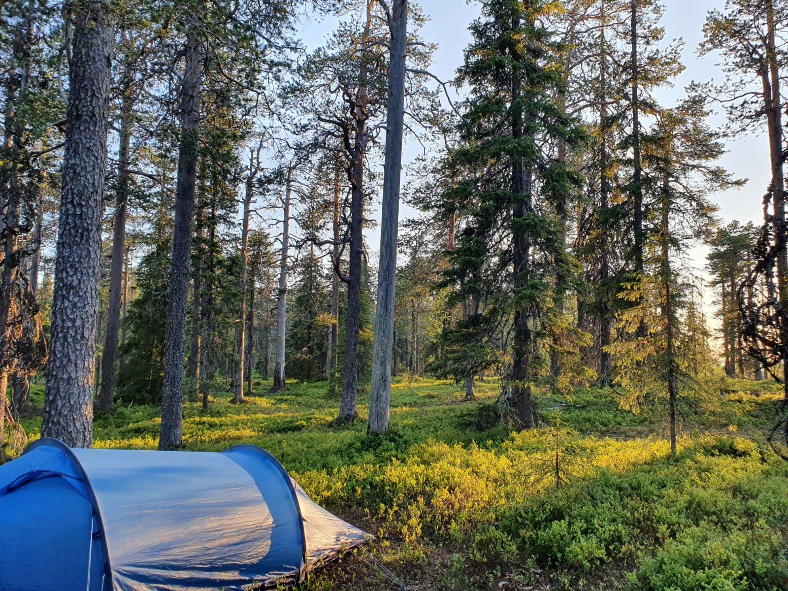 Telttailua Karhunjuomalammella, Pyhä-Luoston kansallispuisto